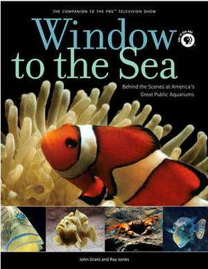Window to the Sea: Behind the Scenes at America's Great Public Aquariums