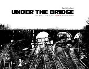 Under the Bridge: The East 238th Street Graffiti Hall of Fame