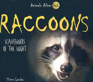 Raccoons: Scavengers of the Night
