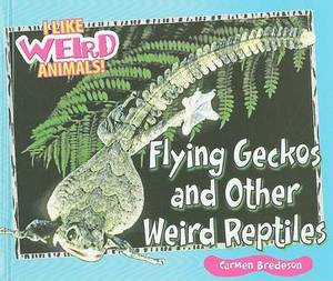 Flying Geckos and Other Weird Reptiles