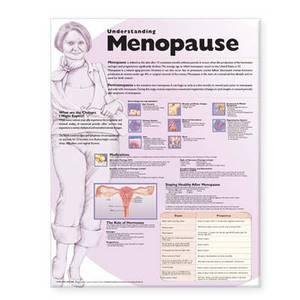 Understanding Menopause Anatomical Chart