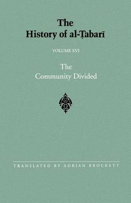 The History of Al-Tabari: The Community Divided: the Caliphate of 'Ali I A.D. 656-657/A.H. 35-36: v.16