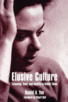 Elusive Culture: Schooling, Race and Identity in Global Times