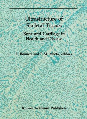 Ultrastructure of Skeletal Tissues: Bone and Cartilage in Health and Disease