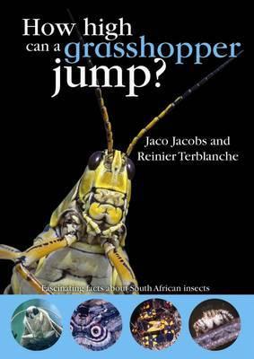 How High Can a Grasshopper Jump?