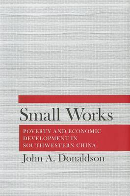Small Works: Poverty and Economic Development in Southwestern China