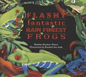 Flashy Fantastic Rainforest Frogs