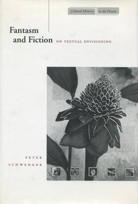 Fantasm and Fiction: On Textual Envisioning