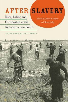 After Slavery: Race, Labor and Citizenship in the Reconstruction South