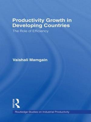 Productivity Growth in Developing Countries: The Role of Efficiency
