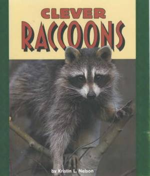 Clever Raccoons