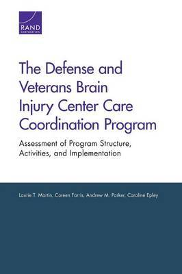 The Defense and Veterans Brain Injury Center Care Coordination Program: Assessment of Program Structure, Activities, and Implementation