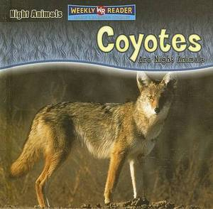 Coyotes Are Night Animals