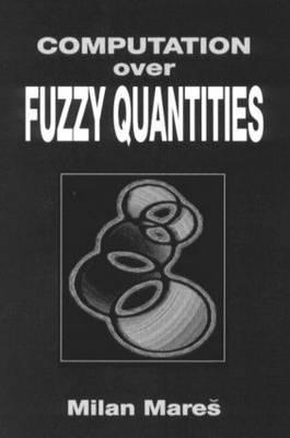 Computation Over Fuzzy Quantities