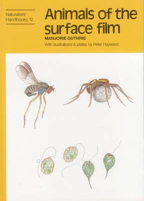 Animals of the Surface Film