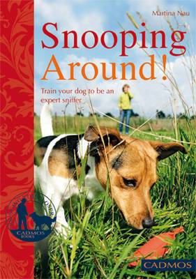 Snooping Around: How to Encourage Your Dog's Sense of Smell