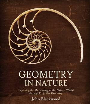 Geometry in Nature: Exploring the Morphology of the Natural World Through Projective Geometry