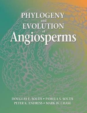 Phylogeny and Evolution of Angiosperm