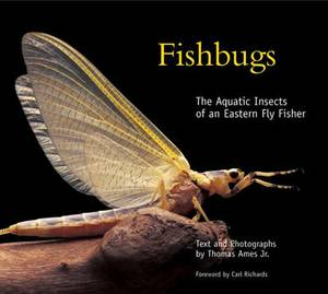 Fishbugs: The Aquatic Insects of an Eastern Fly Fisher