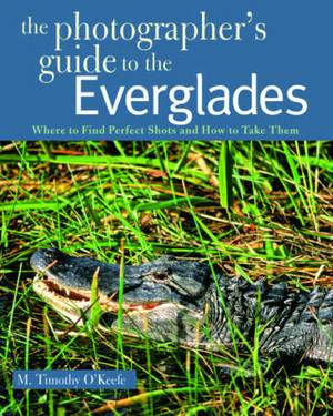 The Photographer's Guide to the Everglades: Where to Find Perfect Shots and How to Take Them