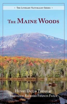 Maine Woods