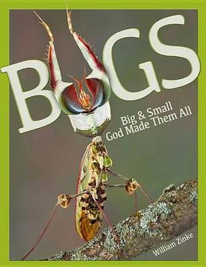 Bugs Big & Small  : God Made Them All