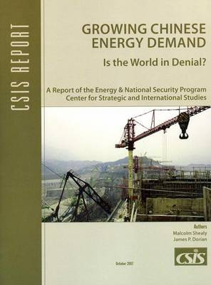 Growing Chinese Energy Demand: Is the World in Denial?