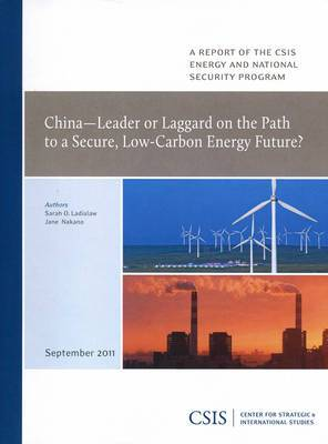 China-leader or Laggard on the Path to a Secure, Low-carbon Energy Future