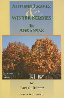 Autumn Leaves & Winter Berries in Arkansas