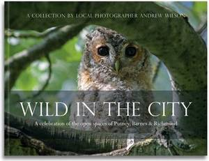 Wild in the City: A Celebration of the Open Spaces of Putney, Barnes and Richmond