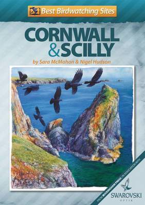 Best Birdwatching Sites in Cornwall and Scilly