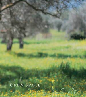 Open Space