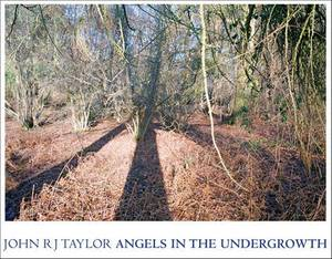 Angels In The Undergrowth