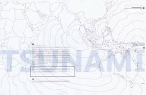 Tsunami: A Document of Devastation