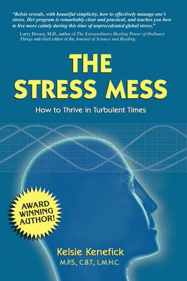 The Stress Mess: How to Thrive in Turbulent Times