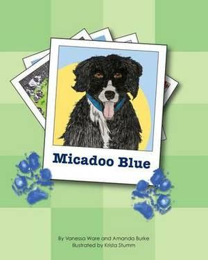 Micadoo Blue