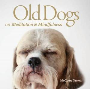 Old Dogs on Meditation and Mindfulness