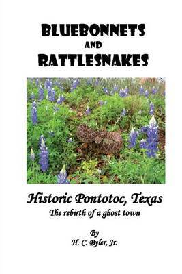 Bluebonnets and Rattlesnakes