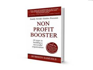 Non-Profit Booster: 10 Steps to Building a Successful Organisation
