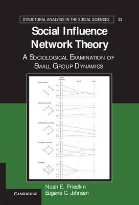 Social Influence Network Theory: A Sociological Examination of Small Group Dynamics