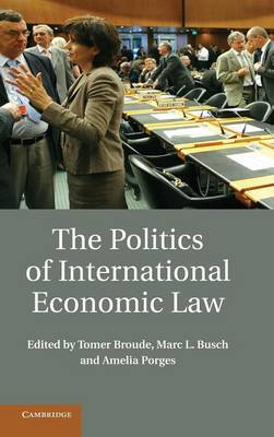 The Politics of International Economic Law: Risk and Opportunity in Crisis
