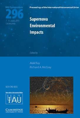 Supernova Environmental Impacts (IAU S296)