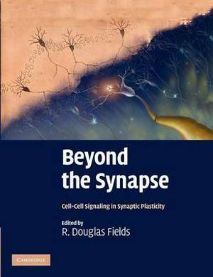 Beyond the Synapse: Cell-Cell Signaling in Synaptic Plasticity
