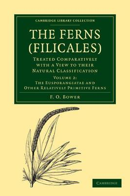 Ferns (Filicales): Volume 2, the Eusporangiatae and Other Relatively Primitive Ferns: Treated Comparatively with a View to Their Natural Classification