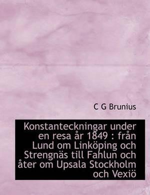 Konstanteckningar Under En Resa AR 1849: Fran Lund Om Linkoping Och Strengnas Till Fahlun Och Ater Om Upsala Stockholm Och Vexio