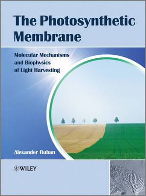 The Photosynthetic Membrane: Molecular Mechanisms and Biophysics of Light Harvesting