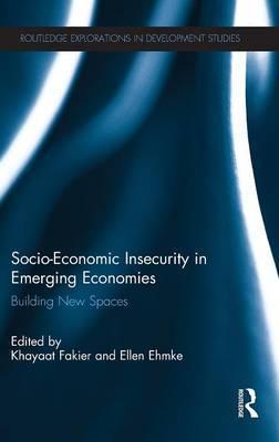 Socio-Economic Insecurity in Emerging Economies: Building new spaces