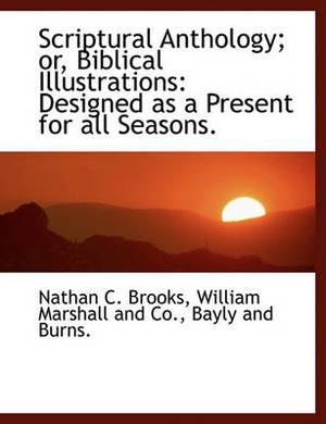 Scriptural Anthology; Or, Biblical Illustrations: Designed as a Present for All Seasons.