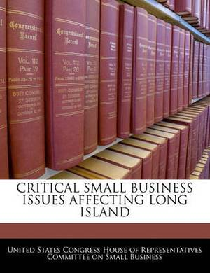 Critical Small Business Issues Affecting Long Island