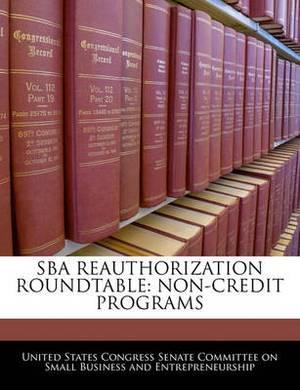 Sba Reauthorization Roundtable: Non-Credit Programs